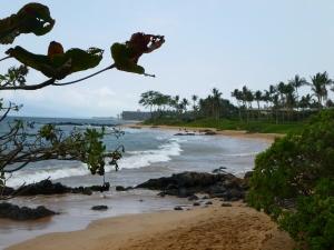 Maui 2013 016