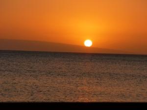 Maui 2013 053