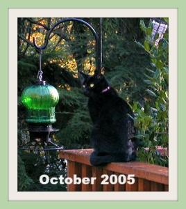 Oct 2005